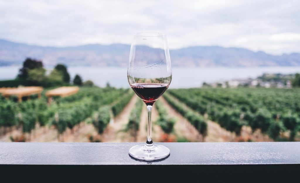 Fiesta del vino tinto
