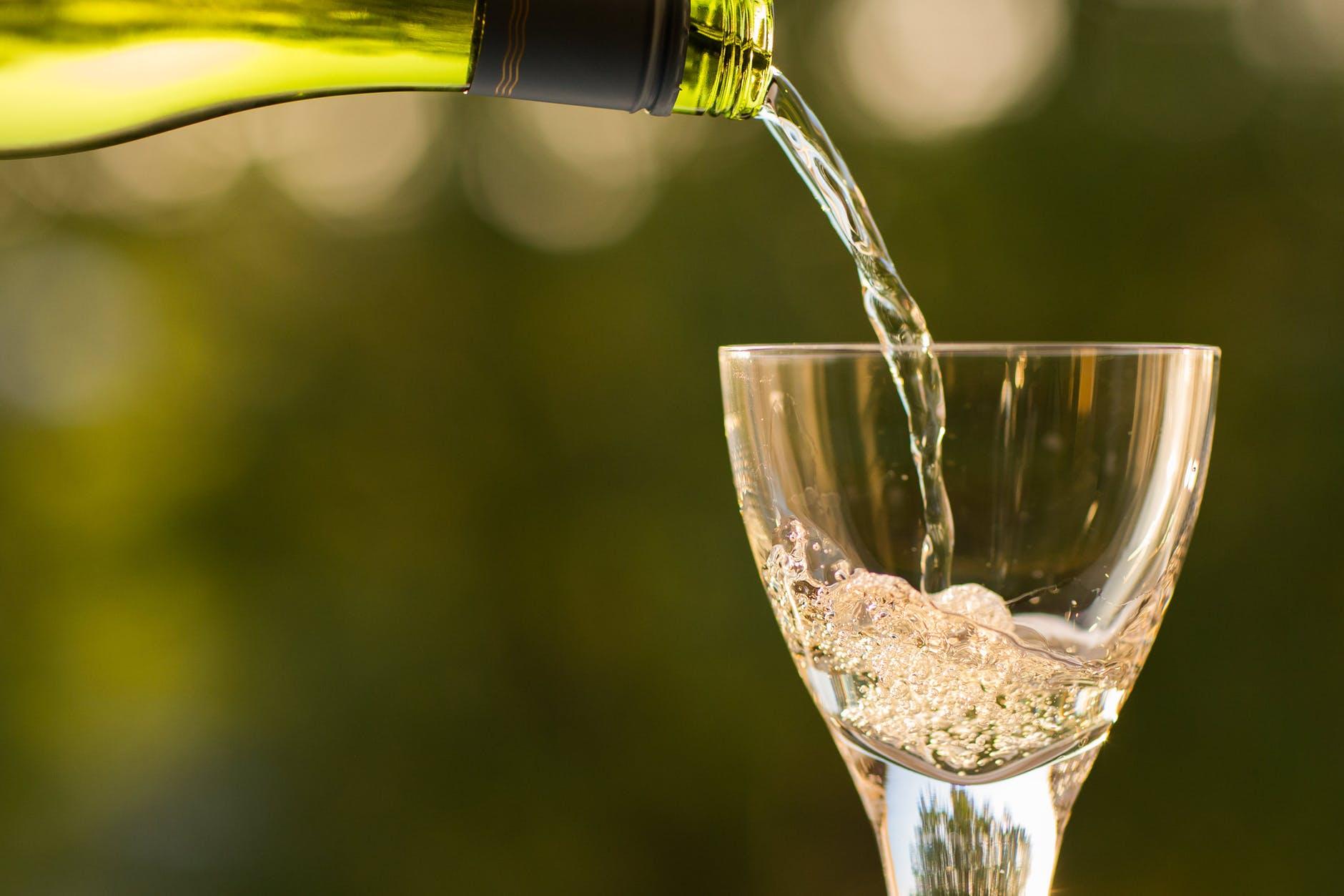 muestra de vinos de la ribera